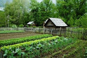 L'agriculture bio est une filière respectueuse de l'environnement, dynamique et contrôlée, et les produits sont diversifiés et de qualité.