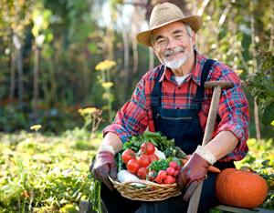 Plaisir et bien-être pour vous et votre entourage avec la culture biologique