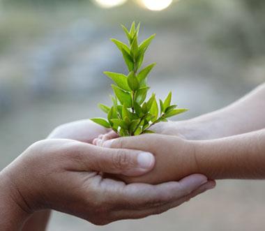 Cultivons bio pour les générations futures